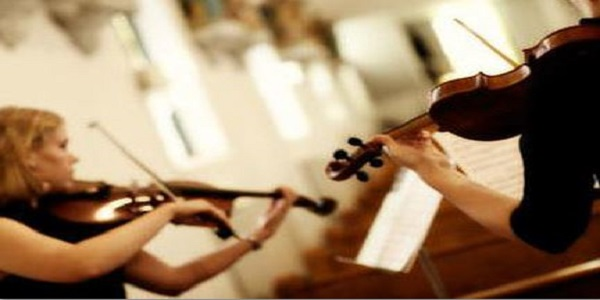 Laura Springham Violinists